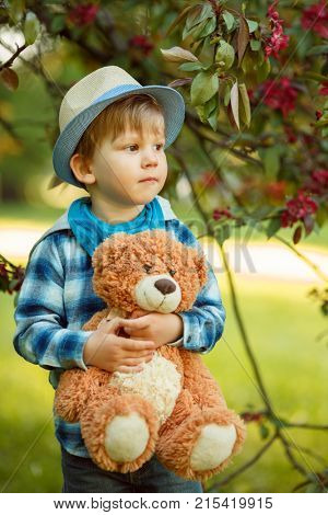 Boy in the park and with a teddy bear. Child in the nature.