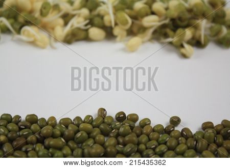 Blurry defocused mung sprouts and dry little mung lentils with empty white space