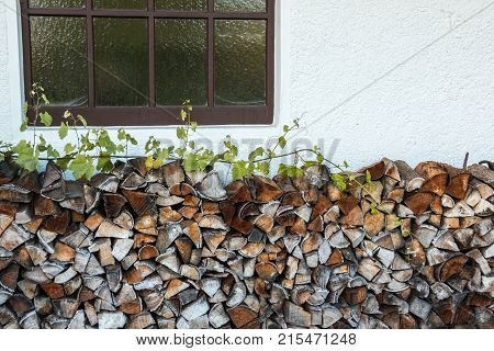 Dry firewood by the wall of a house