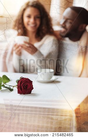Fantastic date. Beautiful red rose lying on the table while cheerful couple having splendid time together