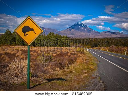 Kiwi Sign In Nz Landscape