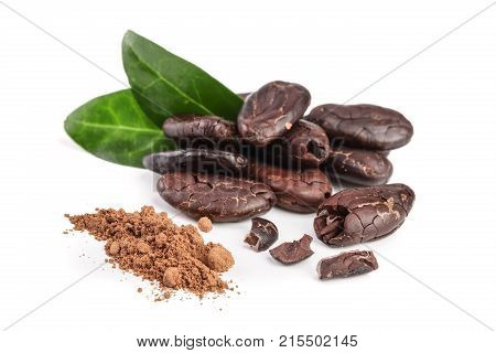 peeled cocoa bean with leaf and cocoa powder isolated on white background.