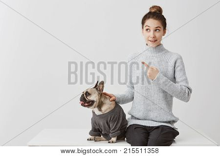 Dressed french bulldog with joyful female owner. Woman in grey sweater sitting on desk pointing index finger paying attention to something curious. Positive human emotions, facial expression