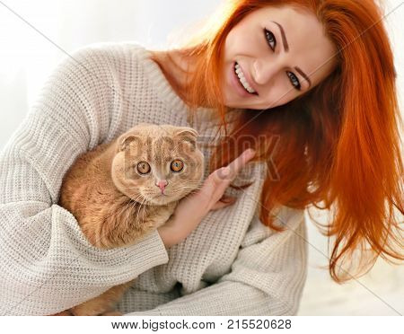 Beautiful Young Woman With Red Cat. Domestic Cat Scottish Fold Close-up.