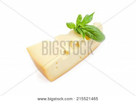 Piece of the Swiss cheese with cheese's eyes decorated with twig of the green basil on a white background