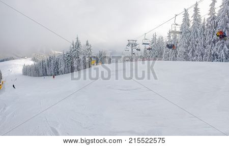 Ski and chairlift among spruce forest in ski resort at a cloudy frosty day in Carpathian Mountains