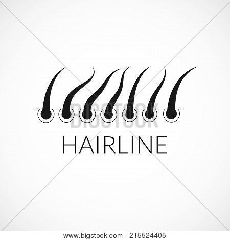 Hairline illustration. Simple hair silhouette icon for design
