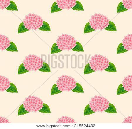 Pink Hydrangea Flower Seamless on Beige Ivory Background. Vector Illustration.