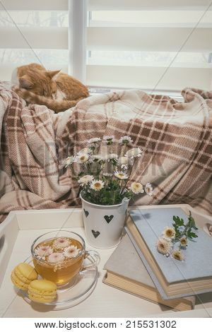 Sweet Home With Flowers, Tea And A Cat