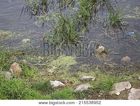 Environmental pollution. Contamination of the environment. Polluted river. Trash background.