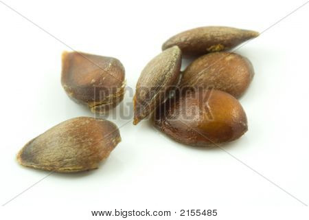 Apple Seeds.