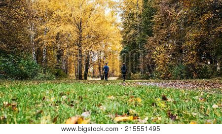 A beautiful forest, teenager runs park distance. Running athletes park on a run early morning. Several children are running woods doing sports. Healthy lifestyle.