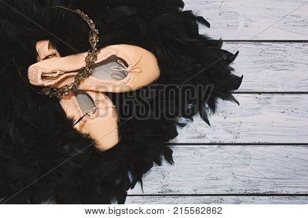 Black Swan Ballet Image