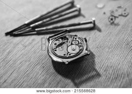 Watchmaker is repairing a vintage automatic watch.