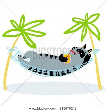 Summer holidays. Cat lying in hammock. Feline funny character with drink. Vector illustration