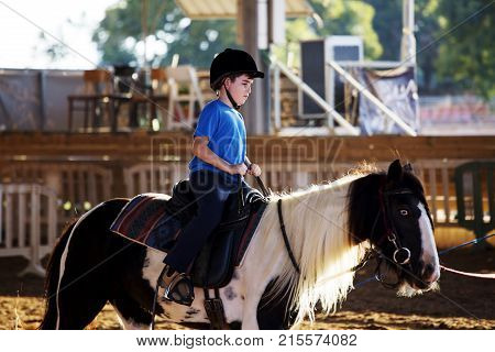 Portrait of little boy riding a horse. First lessons of horseback riding. Sunny day