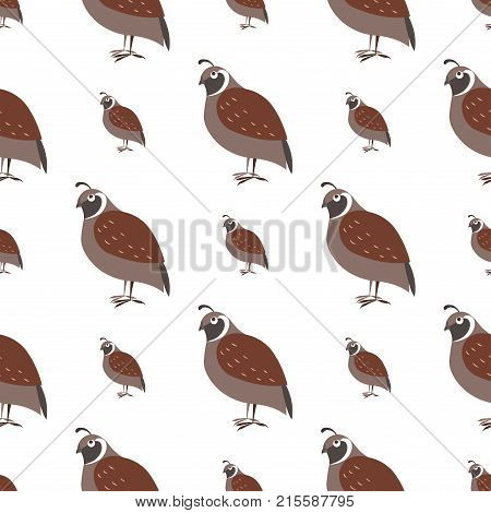 Cartoon quail seamless pattern on white background. Brown singing bird ocher endless texture. Vector illustration of wildlife flying character, wallpaper wrapping paper design repeatable structure