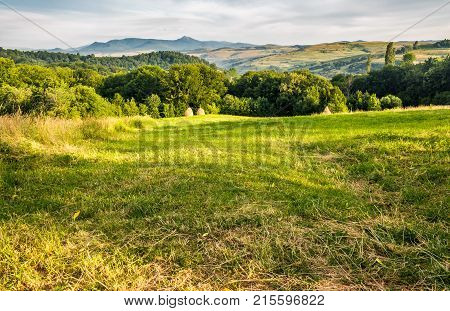 Grassy Rural Field In Mountains