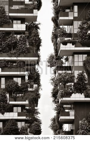 MILAN - MAY 24: Bosco Verticale closeup on May 24, 2016 in Milan, Italy. The International Highrise Award winner tween tower hosts more than 900 trees.