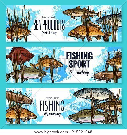 Fish banners sketch design templates fro fishing store of fisherman seafood product market. Vector design of marlin, trout or flounder and salmon, eel or tuna and mackerel with anchovy fishes