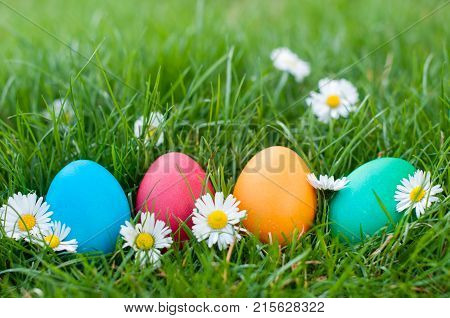 Four Easter eggs in a row ia a grass
