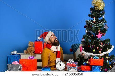 Santa Claus Sits Near Fir Tree On Blue Background.