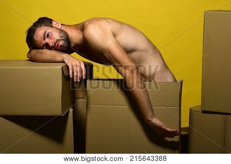 Guy With Naked Torso Takes Nap Boxes. Man With Beard