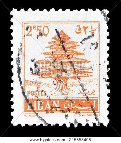LEBANON - CIRCA 1961 : Cancelled postage stamp printed by Lebanon, that shows Cedar tree.