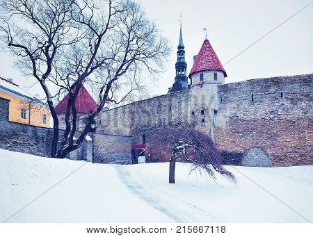 Defensive walls and Spire of St Nicholas Church in the Old town of Tallinn Estonia in winter