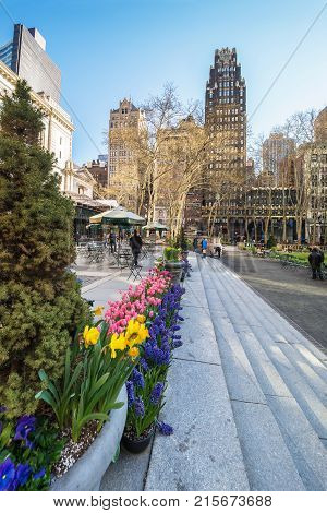 New York USA - April 24 2015: Green plants in blossom and Skyscrapers in Bryant Park in Midtown Manhattan New York NYC USA. Skyscrapers and tourists on the background.