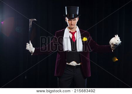 Magician with rabbit, Juggler man, Funny person, Black magic, Illusion on a black background.