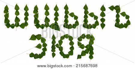 Cyrillic Letters from birch leaves. The leaves of birch. Russian Alphabet Sh-Ya