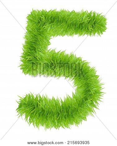 Green grass number 5 Five isolated on white background
