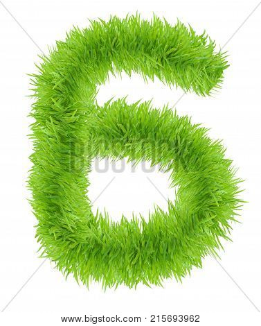 Green grass number 6 Six isolated on white background