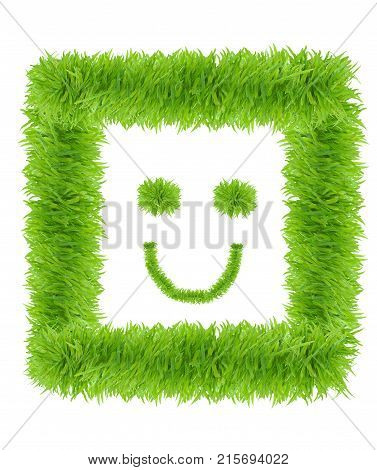 Smiling face made from green grass isolated on white background