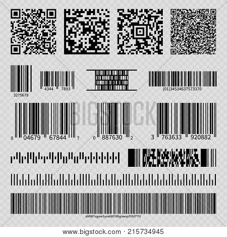 Business barcodes and QR codes isolated on transparent background. Vector illustration
