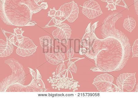 Forest Animals Plants Vector & Photo (Free Trial) | Bigstock