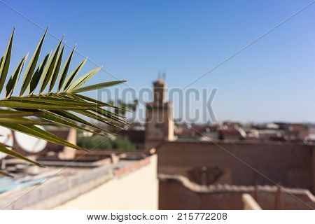 marrakesh morocco medina viewed from rooftop at day time poster