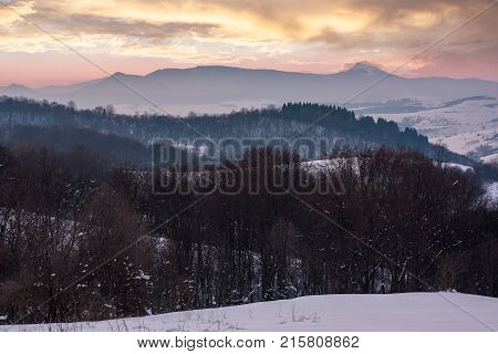 Leafless Forested Hills At Winter Dawn
