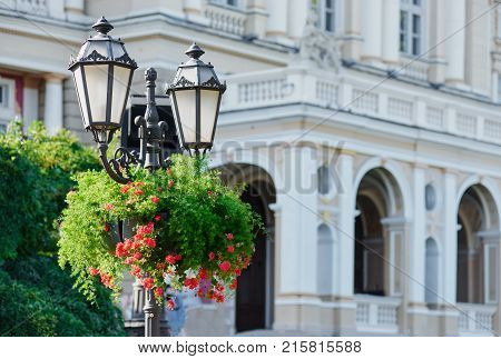 architectural building with streetlight decorated with flowerpot