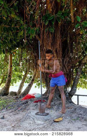 Lavena, Fiji - November 26: Unidentified Man Pounds Kava Roots On November 26, 2013 In Lavena Villag