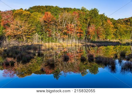 Magnificent resort in French Canada - Mont Tremblant. Multicolored foliage of autumn forests is reflected in ponds. The pond is smooth like a mirror. Concept of ecological and automobile tourism