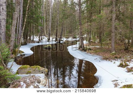 Partially frozen forest river at spring in finland