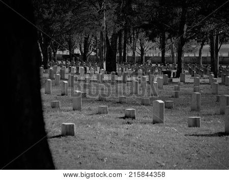 Civil War Cemetery with many white headstones poster