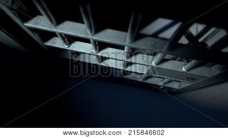 Jail Cell Door And Welded Iron Bars