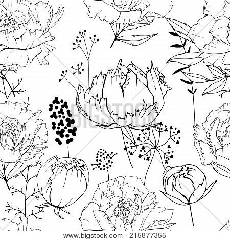 Seamless Season Pattern With Contour Lack And White Flowers. Endless Texture For Floral Summer Desig
