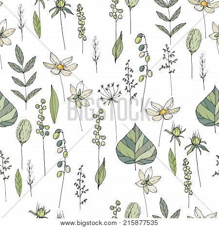 Seamless Season Pattern With Contour Wild Flowers, Herbs And Leaves. Endless Texture For Floral Summ