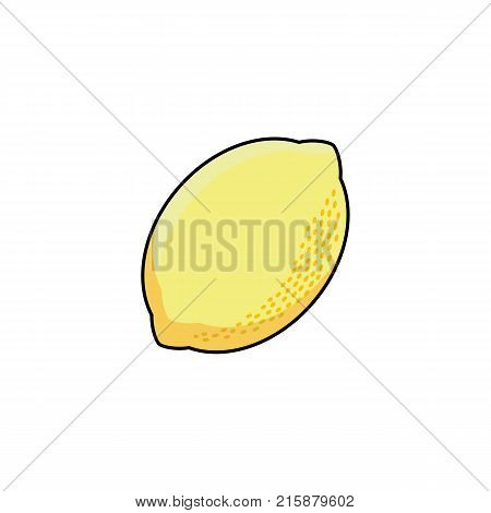 vector flat sketch style yellow fresh ripe lemon. Isolated illustration on a white background. Healthy vegetarian eating, dieting and lifestyle design object.