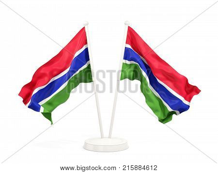 Two Waving Flags Of Gambia