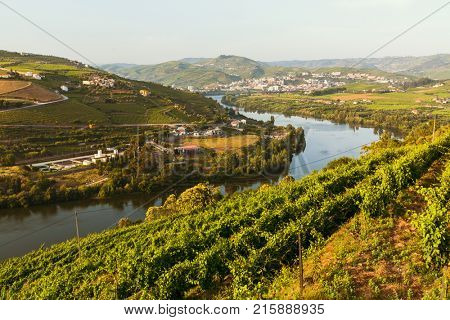 Top view of Douro river, and the vineyards are on a hills, Douro Valley, Portugal.